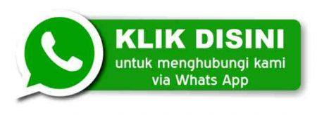 Call/WA 089 668 668 000